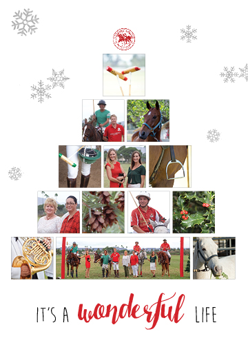 2015 SDPC Christmas Card