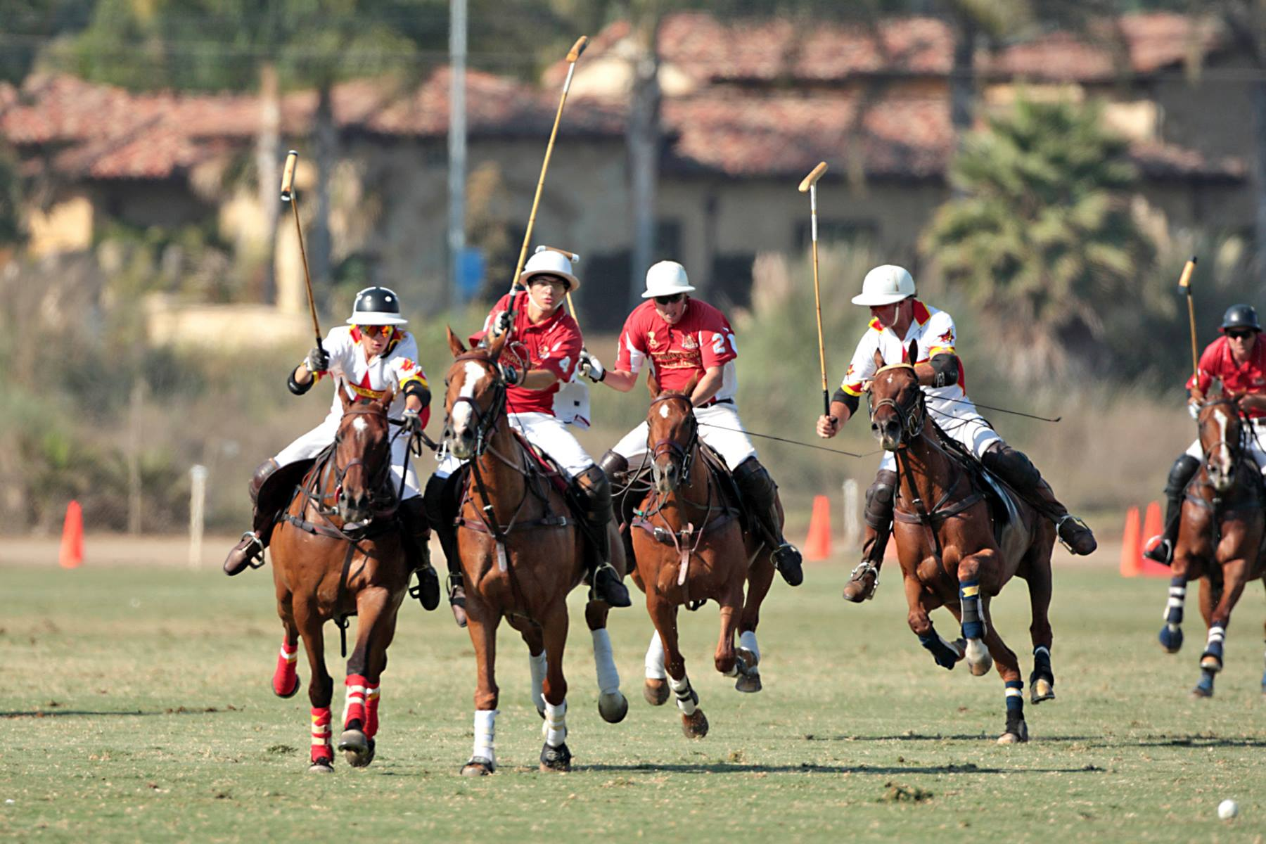 sd-polo-action-american-heart